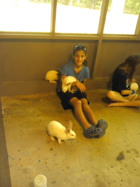 Bunny Love! Cuddling is fun!