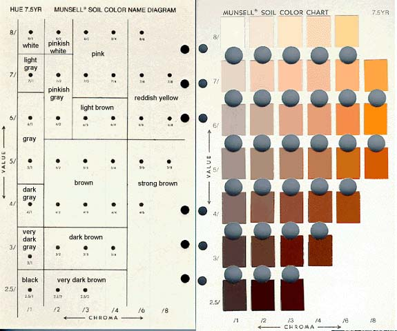 Make Your Own Soil Color Book | DirtArtful