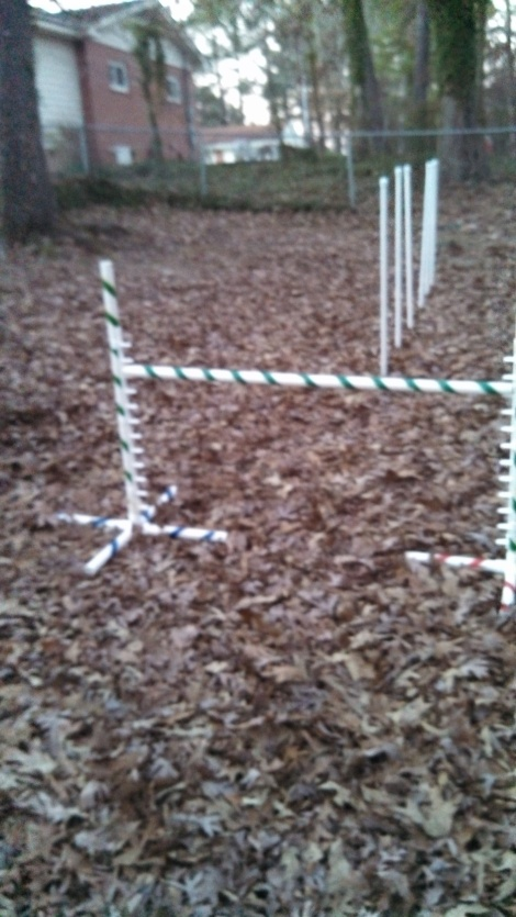 This is the agility equipment my friend lent me..
