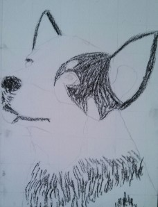 I first went in a blocked the black color for the cattle dog puppy.