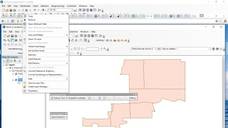 Figure 3: This shows the addition to the ArcMap context menu (I added Exclude Unselected Features).