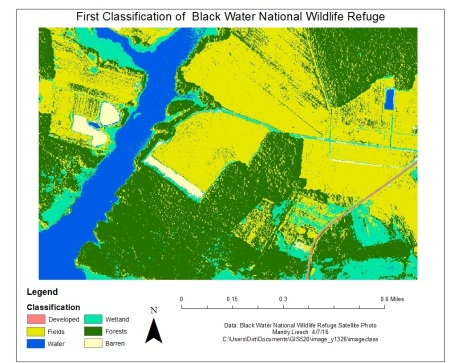 Figure 2: The initial image classification raster file. Notice that water is often misclassified as swampland, as are the shadows on the orthophoto. However, it is a fairly good representation of the  area.